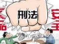 海南省成功侦破特大跨国制售假药案