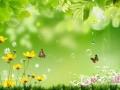 春季应预防以下疾病