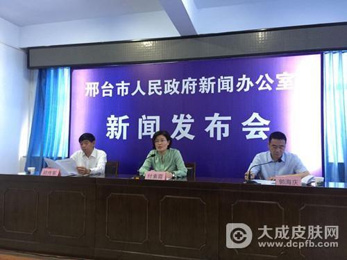 邢台市召开2017年医改及2018年公立医院综合改革专题发布会