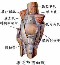 膝关节镜下前十字韧带重建术